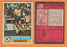 Norwich City Martin Peters England 224